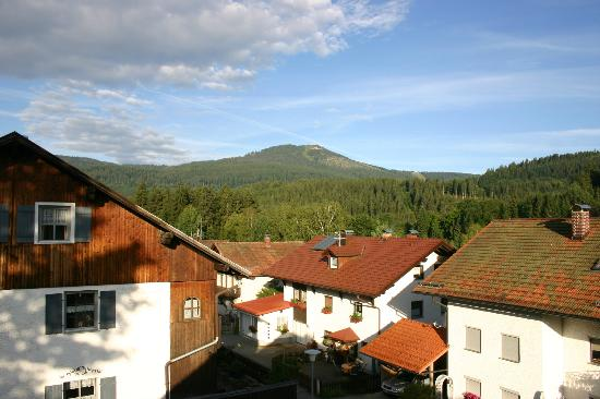 Bavarian Forest Holidays: View from our apartment towards the Arber