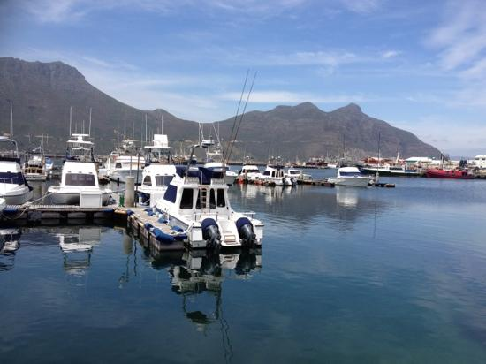 The Lookout Deck Hout Bay Restaurant, Bar & Sushi: The view from out table :)