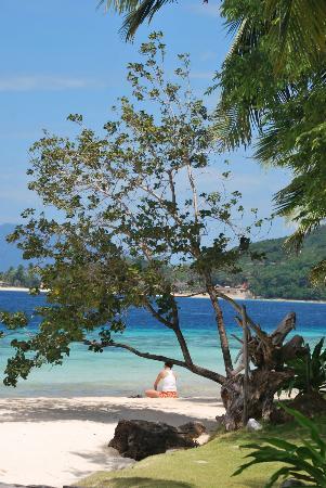 Banana Island: relaxing ambiance