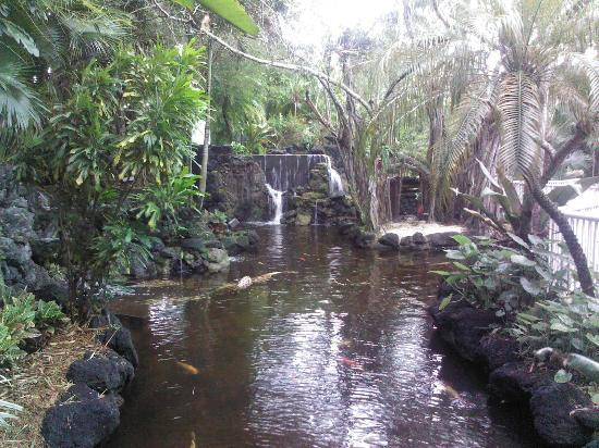 Bonaventure Resort & Spa: Waterfalls and gardens