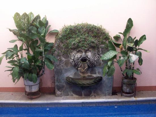 Casa San Francisco: Fountain by the pool