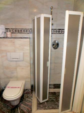 Hotel delle Nazioni: Shower and toilet