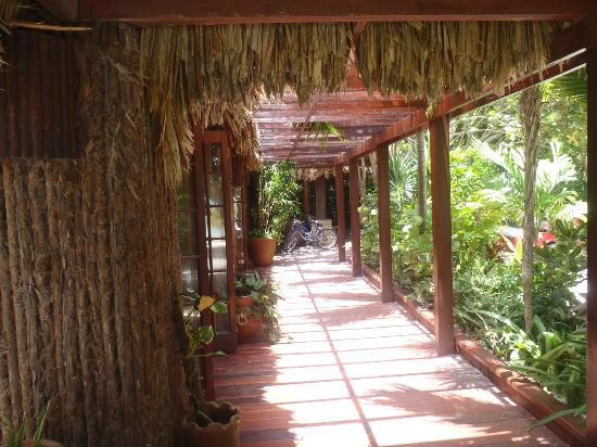 Ramon's Village Resort: walkway by the restaurant / reception