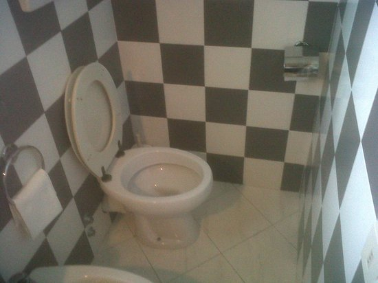Hotel Corsi : Vista angolo WC