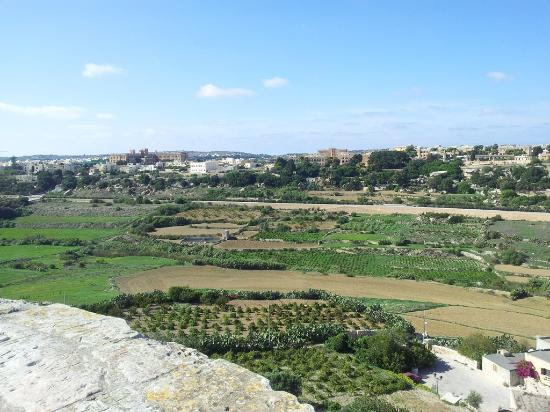 Mdina Old City: View from the city walls