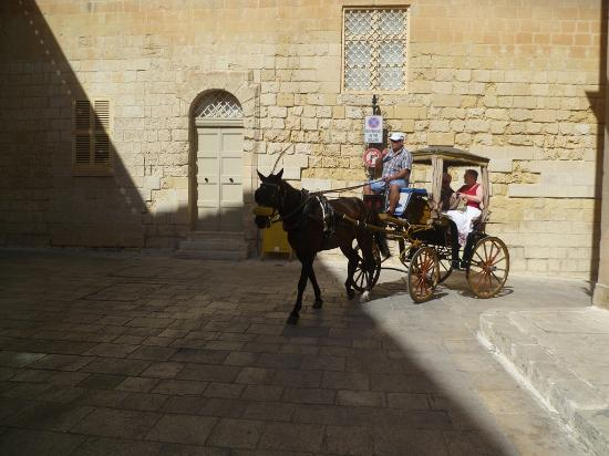 Mdina Old City 사진