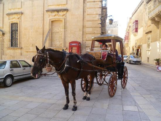 Mdina Old City: Horse & carriage ride