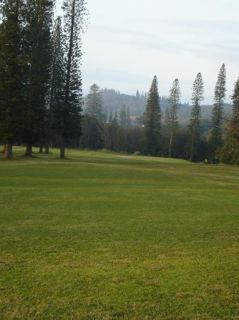 Cavendish Golf Course