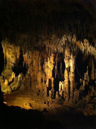 Florida Caverns State Park: caverns