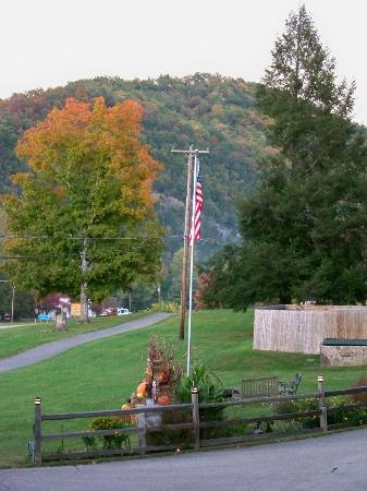Townsend Gateway Inn: Beautiful fall foliage all around the area
