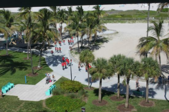 The Tides South Beach : Great view :)