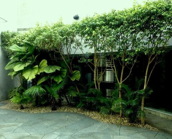 Hyatt Regency Mumbai: Greenary aside function area