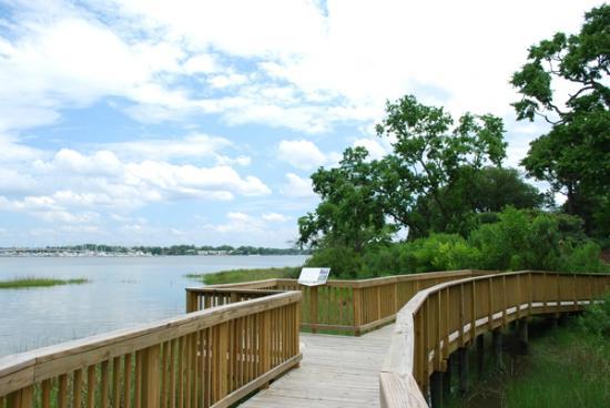Hermitage Museum and Gardens: wetlands boardwalk