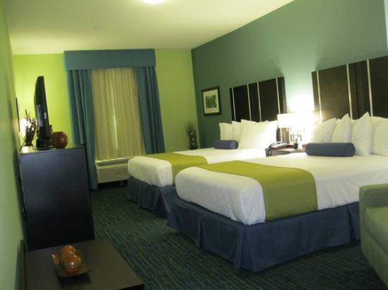Best Western Plus Carrizo Springs Inn & Suites: Guest Room