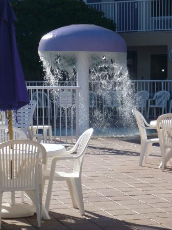 Clarion Suites Maingate: Infants' pool (very windy day)