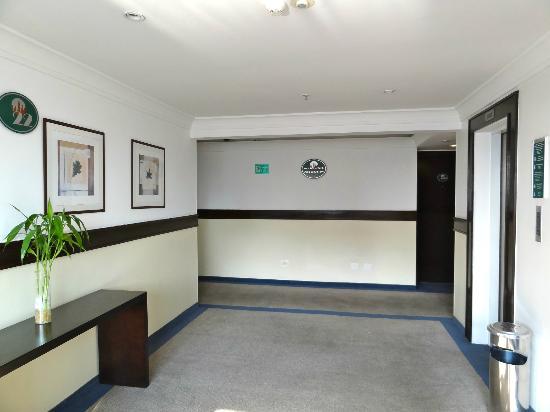 كواليتي سويتس ألفافيل: hallway in front of the three elevators on the 18th floor. 