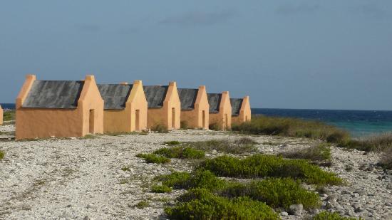 Seadonkey Lodge: la salina