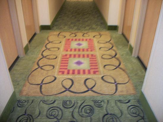 Hampton Inn Waldorf : The Hallway