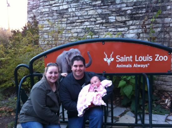 St. Louis Zoo: great family day at the zoo