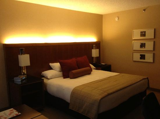 Hyatt Regency Crystal City at Reagan National Airport: The King sized bed