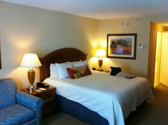 Hilton Garden Inn Gainesville: Clean & comfortable.