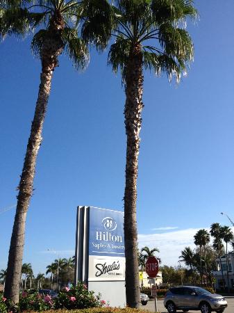 Hilton Naples: La photo est de moi et pas de retouche pour le ciel bleu en février :-)