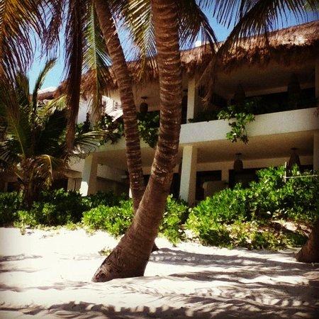 Cabanas Tulum: De la playa a las habitaciones