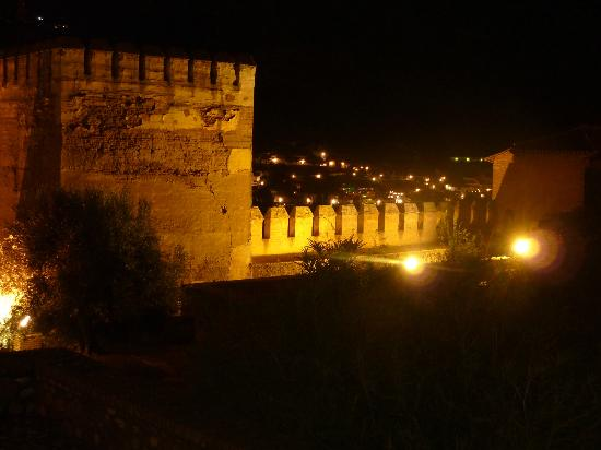 La Almunia del Valle: The Alhambra at night