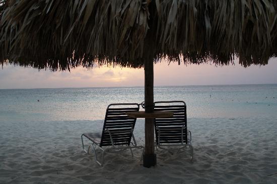Eagle Beach: Paradijs