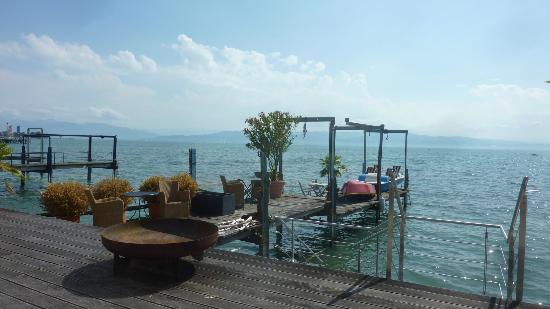 Garden Picture Of Pension Am Bodensee Kressbronn Tripadvisor