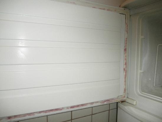 Molhe Apartments-Ponte Nova: Puerta de nevera con bichos y oxido