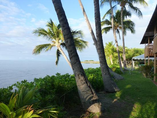 Hotel Molokai: Beach