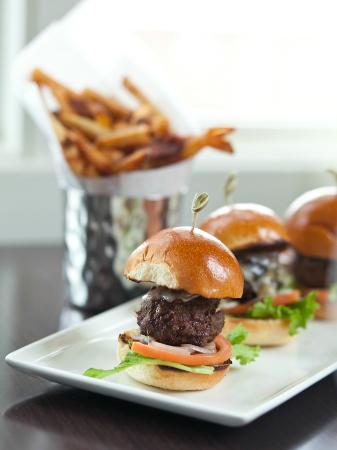 Wayne Hotel: Sliders and house cut fries