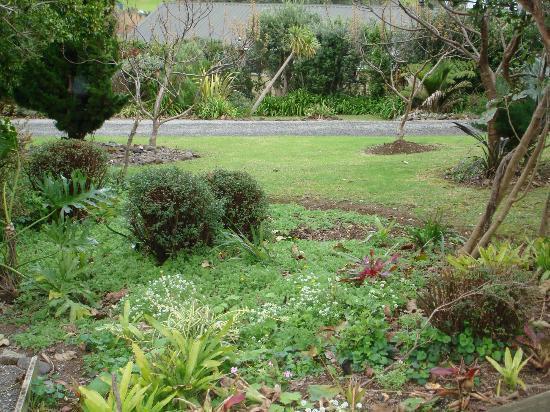 Manuka Lodge: Garden