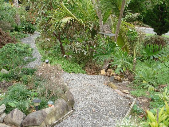 Manuka Lodge: Garden Path