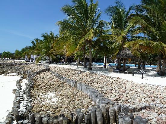 Diamonds La Gemma dell' Est: Top level is the hotel's 'imported' beach.
