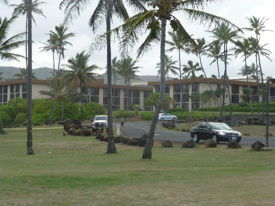 Aston Aloha Beach Hotel: Hotel Grounds