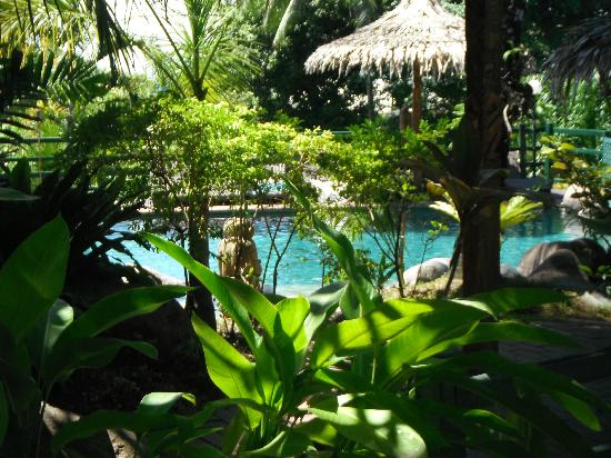 King Solomon Hotel: Pool with leaf huts