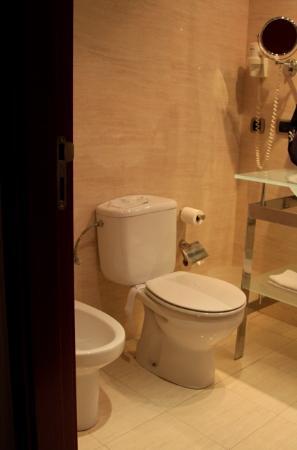 Hotel Zenit Borrell: toilet