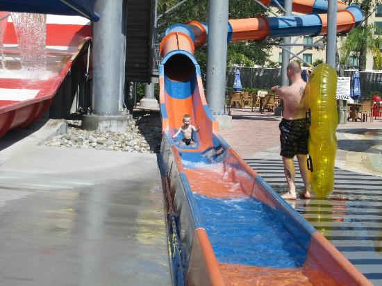 Coco Key Hotel and Water Park Resort: thee fastest slide ive ever been on great!!!