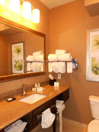 Comfort Suites New Bern : bathroom