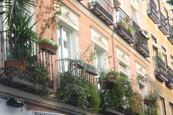 Tapas Tour in Madrid - Bar Crawl: Lovely city :)