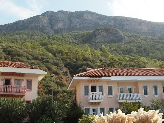 Turquoise Hotel: Hotel Turquoise