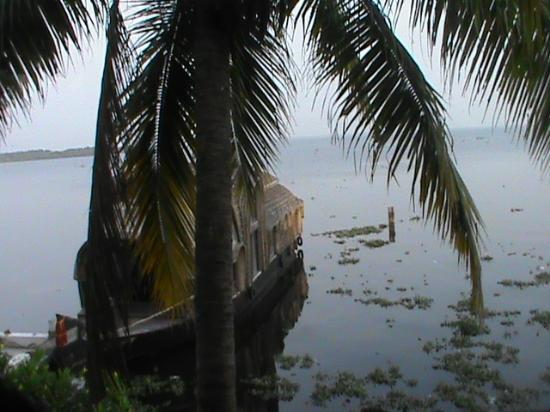 Lemon Tree Vembanad Lake Resort: View from Restaurant3