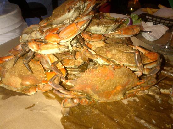 Best Crab Cakes In Jacksonville Fl
