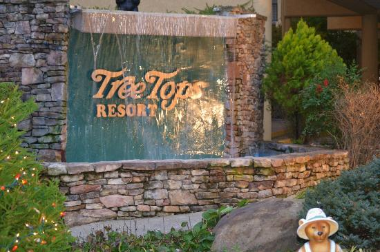 Tree Tops Resort: Entrance to property