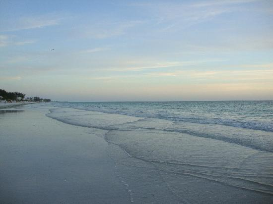 Tradewinds Beach Resort: Low tide