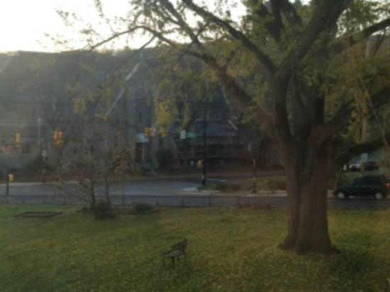 The Sayre Mansion Inn: View out of one of my many windows
