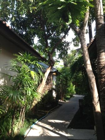 Baan Chaweng Beach Resort & Spa: the hotel
