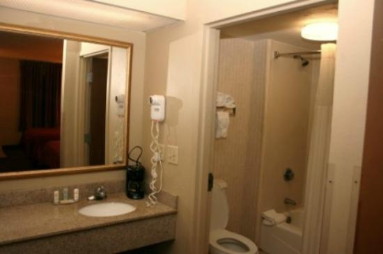Quality Inn : Sink area & Bathroom